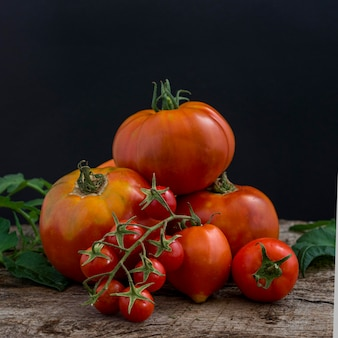 Pompoenen en tomatenregeling