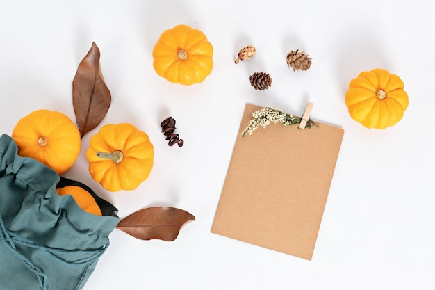 Pompoenen, gedroogde bladeren en noten geïsoleerd