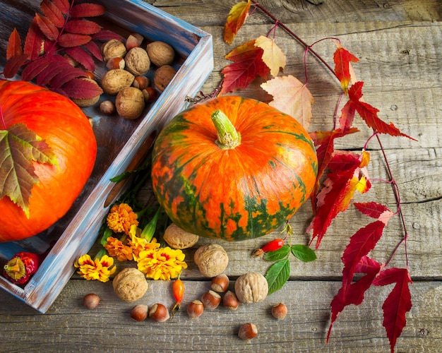 Pompoenen, goudsbloemen, paarse bladeren en noten op oud hout