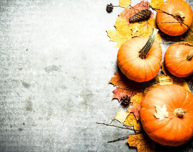 Pompoenen met herfstbladeren