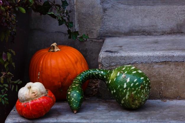 Pompoenen op de trap bij de deur. decoraties voor halloween. kopieer ruimte voor uw tekst