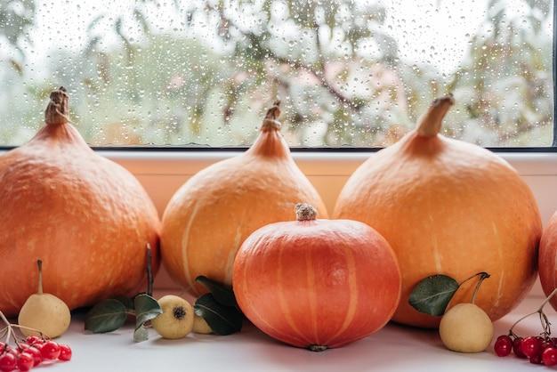 Pompoenen op de vensterbank met regen buiten herfst thanksgiving compositie