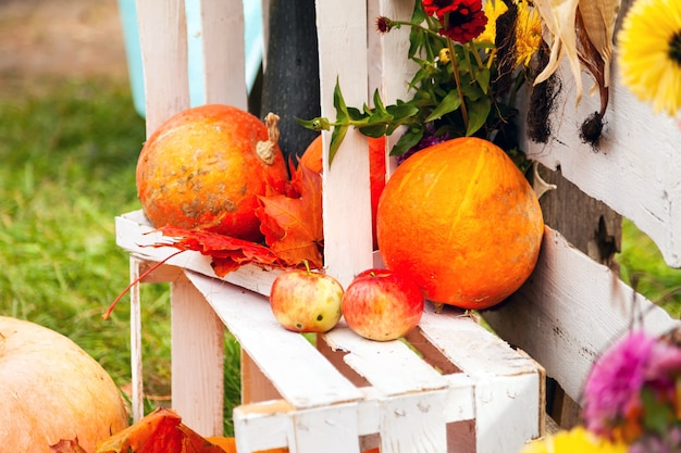 Pompoenen, twee appels en esdoornbladeren die op een witte houten doos liggen. herfst oogst. selectieve aandacht
