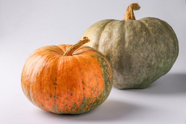 Pompoenen van groen en oranje op een witte achtergrond met een schaduw, herfst stilleven, halloween minimaal concept, horizontale oriëntatie, close-up