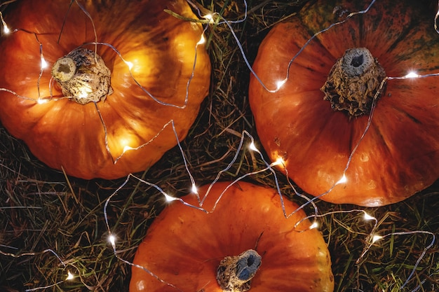 Pompoenen versierd met slingerlichten, uitzicht van bovenaf, herfstvakantiedecoratie