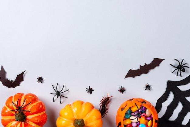 Pompoenen, web, vleermuizen, spinnen, duizendpoot en vliegen op grijs.