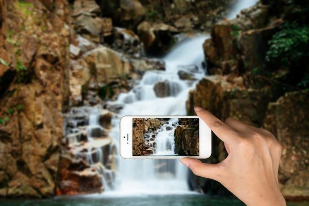 Pool toeristische telefoon nemen van bossen