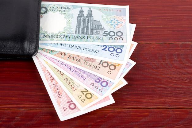 Pools geld - de poolse steden-serie