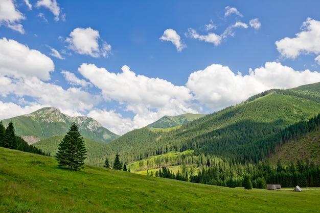 Poolse berg tatry