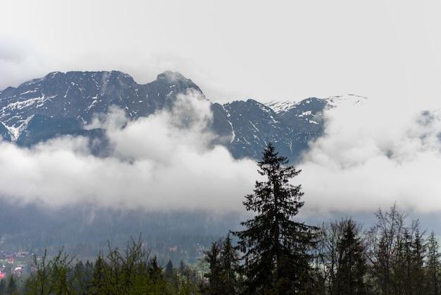 Poolse tatra-bergen in de mist