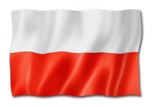 Poolse vlag op wit wordt geïsoleerd