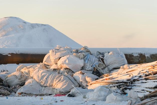 Poolvos op zoek naar voedsel in vuilnis in de winter dump in toendra