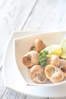 Portie gekookte slakken
