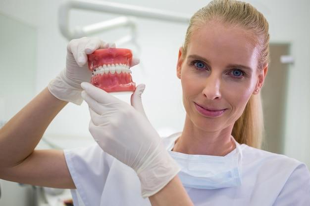 Portret dat van vrouwelijke tandarts een reeks reeks gebitten houdt