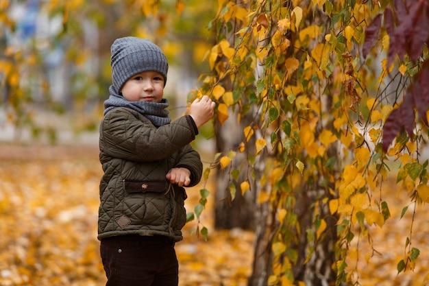 Portret een kleine vrolijke jongen op een herfstwandeling in het park