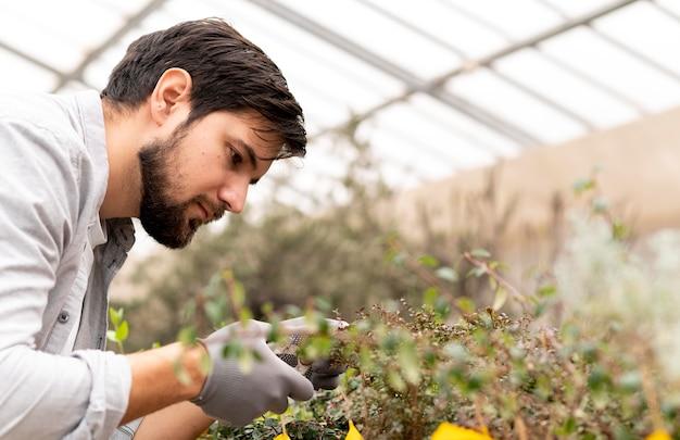 Portret man groeiende planten