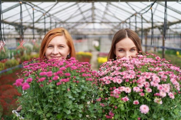 Portret twee schattige dames poseren met een bos van roze chrysanten in een prachtig bloeiende groen huis met glazen dak.