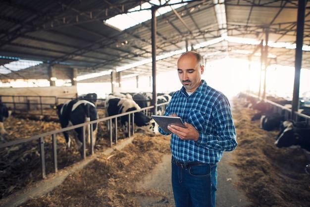 Portret van boer van middelbare leeftijd die zich in koeienboerderij bevindt en tablet gebruikt