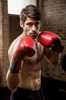Portret van de ernstige mens die bokshandschoenen draagt
