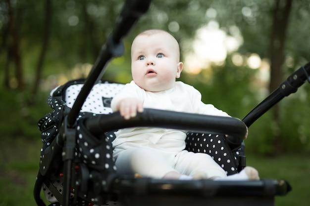 Portret van een baby in een wandelwagen