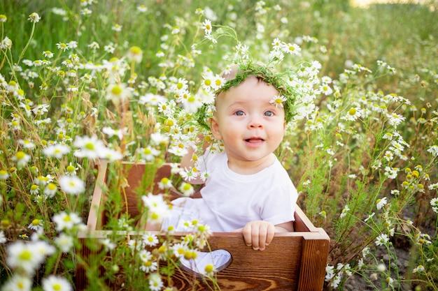 Portret van een babymeisje van 7 maanden oud, zittend op een kamille veld in een krans in een witte jurk