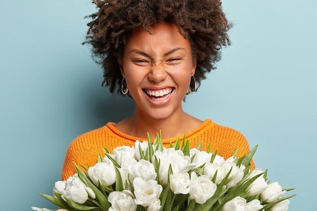 Portret van een blije vrouw met afro kapsel close-up, lacht oprecht, drukt goede emoties uit, houdt witte tulpen vast, houdt van lentebloemen, geniet van een aangenaam aroma, geïsoleerd over blauwe muur.