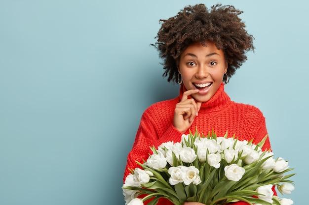 Portret van een gelukkig donkerhuidig meisje met krullend haar, glimlacht vreugdevol, houdt de vinger op de onderlip, gekleed in een rode trui, geniet van de lentetijd, houdt witte tulpen vast, geïsoleerd op blauwe muur