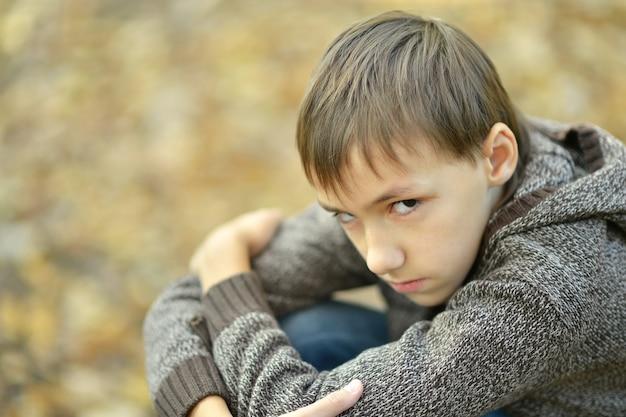 Portret van een gelukkig klein droevig jongetje in het herfstpark
