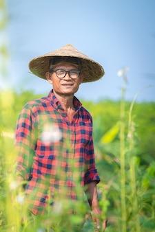 Portret van een gelukkig senior aziatische boer op sesam tuin.