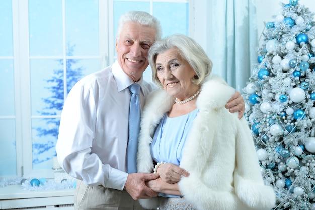 Portret van een gelukkig senior koppel met kerstmis thuis