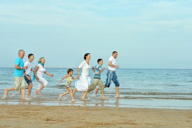Portret van een gelukkige familie die in de zomer op het strand springt