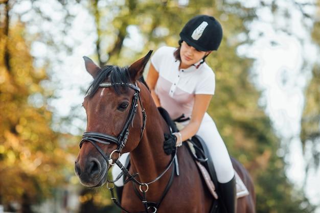 Portret van een jong jockeymeisje dat een bruin mooi paard berijdt in de herfstbos.