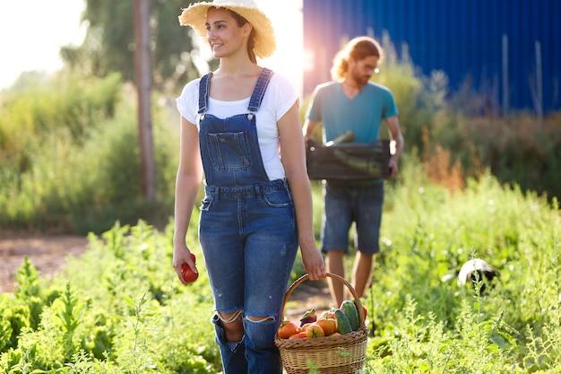 Portret van een jong stel tuinbouwers die voor de tuin zorgen en verse groenten in een krat verzamelen.