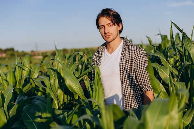 Portret van een jonge agronoom die zich op een graangebied bevindt