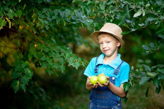 Portret van een jongen van zes jaar oud in blauwe kleren en een hoed in een tuin met appelbomen en appels in de hand