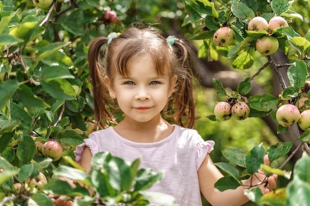 Portret van een klein meisje tussen de takken van een appelboom in de herfst