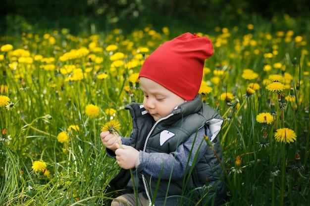 Portret van een kleine blanke blanke jongen in een rode hoed. een kind zit op het gras tussen gele paardebloemen in het park.