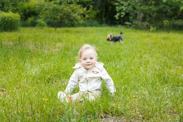 Portret van een kleine blanke blanke jongen. op een zomerse dag zit een kind op het gras in een park. york hond rent in de buurt