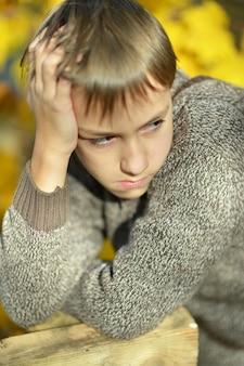 Portret van een kleine droevige jongen in het herfstpark