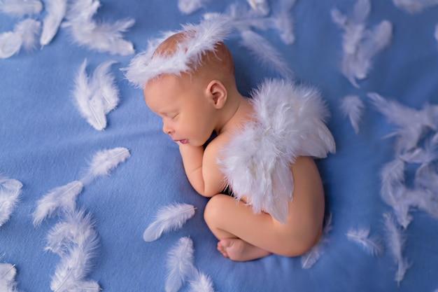 Portret van een kleine engel cupido van het babymeisje, zuigelingsslaap in pluizige vleugels