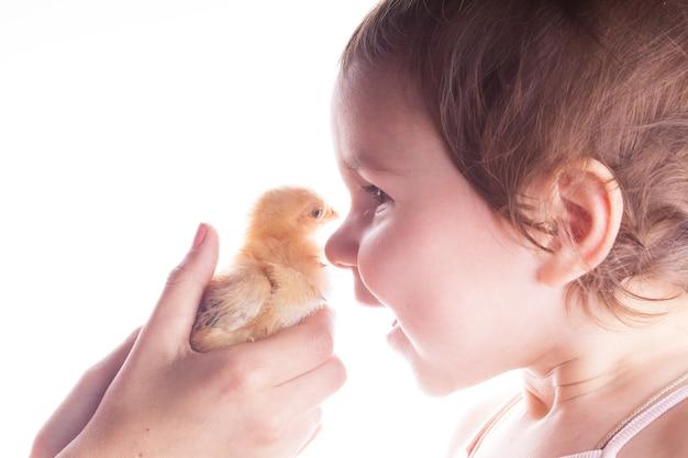 Portret van een lachend kind dat blij is met het zien van kleine kippen. detailopname