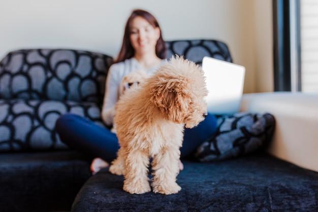 Portret van een leuke bruine stuk speelgoed poedel met zijn jonge vrouweneigenaar thuis. laptop gebruiken. overdag, binnenshuis.