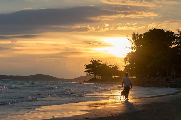 Portret van een meisje met hond wandelen silhouet op het strand bij zonsondergang