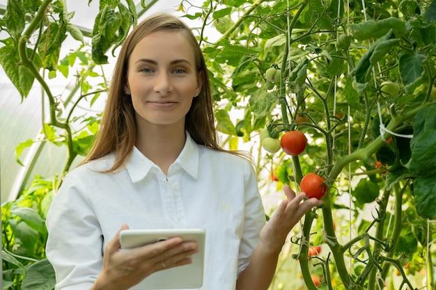 Portret van een mooie vrouwelijke boer in een kas die een tablet gebruikt om de groei van tomaten te volgen