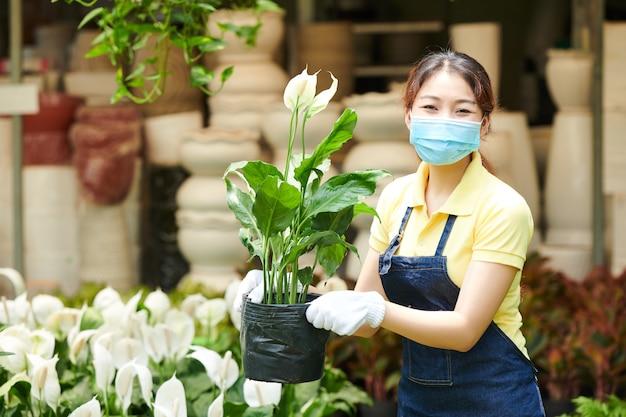 Portret van een positieve plantenmarktmedewerker met een medisch masker en textielhandschoenen met bloeiende spathiphyllum-bloem