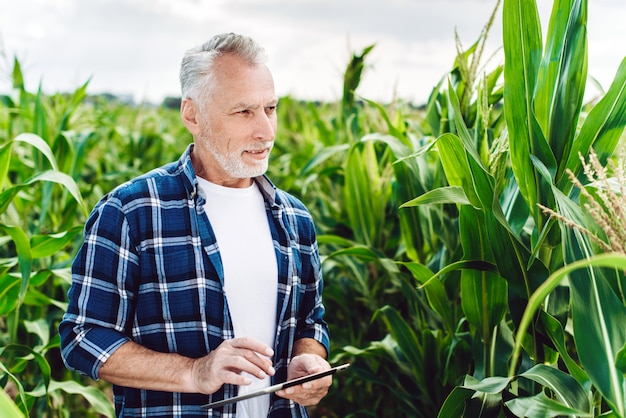 Portret van een senior agronoom inspecteren maïsveld met ipad