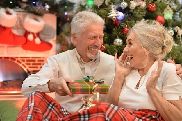 Portret van een senior koppel dat kerstmis viert met een cadeautje