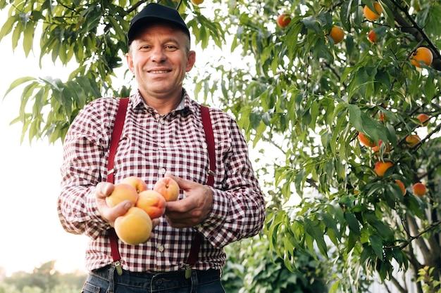 Portret van een senior man in perzikentuin die vol vertrouwen naar de camera kijkt, perzik fruit mannelijke handen