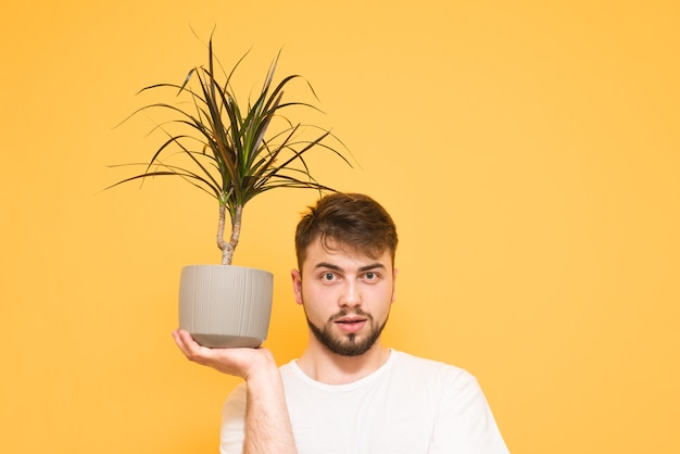 Portret van een tiener op geel houdt bloempot