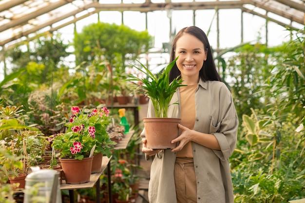 Portret van gelukkige vrij aziatische vrouw met potplant in moderne broeikas